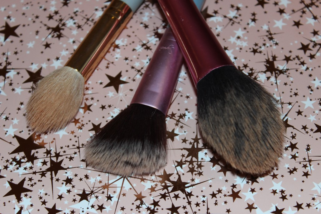 Top 10 Essential Makeup Brush Powder, Blush, Highlight